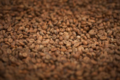 Fresh fried coffee beans close-up Royalty Free Stock Photography