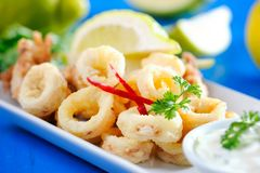 Fresh Fried Calamari Royalty Free Stock Photo