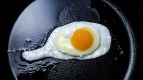 Fresh fried egg in a griddle. royalty free stock photo