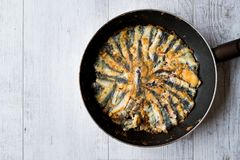 Fresh Fried Sardines in Pan on Wooden Surface. Traditional Food Royalty Free Stock Photo