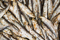 Fresh Fried Smelts Royalty Free Stock Images