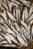 Fresh Fried Smelts Royalty Free Stock Image