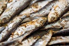 Fresh Fried Smelts Stock Image