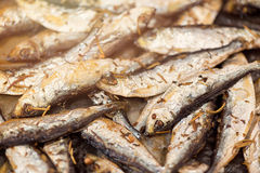 Fresh Fried Smelts Royalty Free Stock Photo