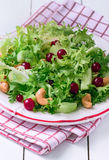 Fresh Frisee Salad Stock Image