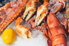 Fresh frozen lobster on ice with lemon. At market Royalty Free Stock Photos