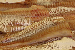 Fresh frozen seafood. Fresh frozen seafood , tasty fish Stock Images
