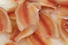Fresh frozen seafood. Royalty Free Stock Photos