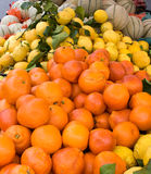 Fresh fruit. S - oranges lemons and melons in the Italian market Stock Images