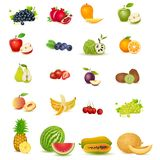 Fresh Fruit. Easy to edit vector illustration of fresh fruit with slice stock illustration