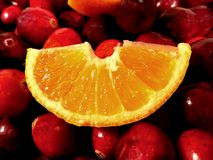 Fresh Fruit. Orange slice sitting on bright red cranberries Royalty Free Stock Photos