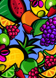 Fresh fruit background Stock Images