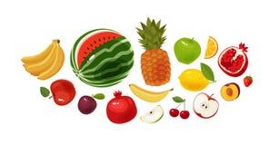 Fresh fruit, banner. Food, icon set. Cartoon vector illustration vector illustration
