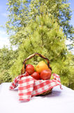 Fresh fruit in a basket Royalty Free Stock Photography