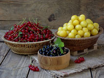 Fresh fruit and berries in baskets on wooden background. Red and black currants, yellow plums royalty free stock images