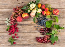 Fresh fruit and berries in a frame Stock Image