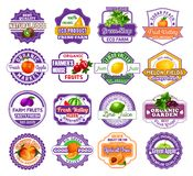 Fruit and berry label for food and drink design. Fresh fruit and berry label set. Apple, orange and pear, lemon, peach and watermelon, grape, plum and kiwi vector illustration
