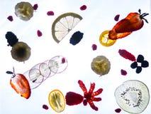 Fresh fruit thinly sliced stock photos