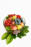 Fresh fruit bowl isolated on white background royalty free stock images
