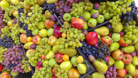 Fresh fruit bulk Stock Photos
