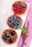 Fresh fruit cakes Stock Photography