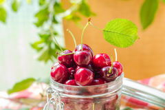 Fresh fruit cherries jar for products processed Stock Photos