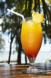 Fresh fruit cocktail on a tropical island Stock Photo
