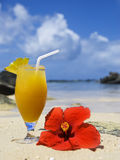 Fresh fruit cocktail on a tropical island Stock Photography