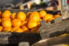 Fresh fruit stock photography