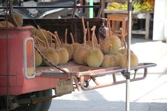 Fresh fruit durian. Market trade of fresh durians pickup selling fruit from the car Royalty Free Stock Photography