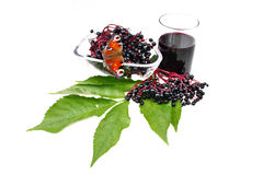 Fresh fruit elderberry Stock Photography