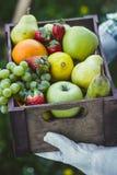 Fresh fruit and farmer stock photo