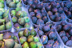 Fresh fruit of green and purple figs Stock Photos