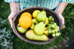 Fresh fruit in hands royalty free stock images
