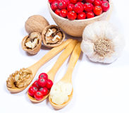 Fresh fruit of hawthorn, garlic and walnuts. The concept of alternative medicine. Stock Photography