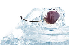 Fresh fruit In Ice Royalty Free Stock Photos
