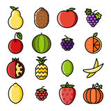 Fresh fruit icons set flat design line art isolated vector illustration Stock Photography