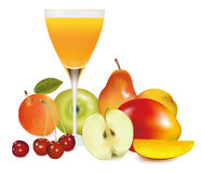 Fresh fruit and juice. Vector. Stock Photo