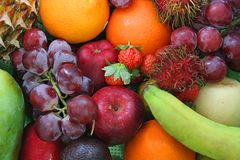 fresh fruit kind Arkivbild