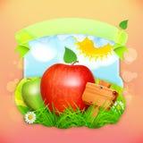 Fresh fruit label apple. Vector illustration background for making design of a juice pack, jam jar etc Stock Images