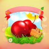 Fresh fruit label cherry Royalty Free Stock Photo