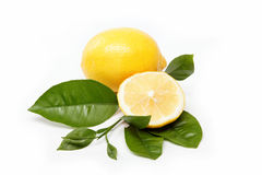 Fresh fruit. Lemon, isolated on a white. Fresh fruit. Lemon, isolated on a white background stock image
