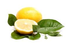 Fresh fruit. Lemon, isolated on a white. Stock Images