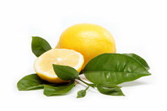 Fresh fruit. Lemon,  on a white. Royalty Free Stock Image