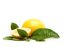Fresh fruit. Lemon, on a white background. Royalty Free Stock Photography
