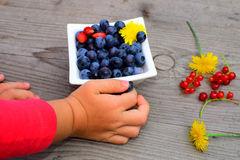 Fresh fruit in little children´s arm Stock Image