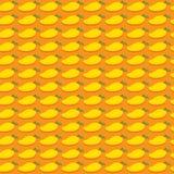 Fresh fruit mango design Stock Image