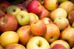 Fresh fruit, many ripe red apples on the counter in the supermarket