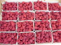 Fresh fruit at the market. Raspberries in boxes at a fruit market in Summer Stock Photos