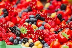 Fresh fruit mix Royalty Free Stock Photo